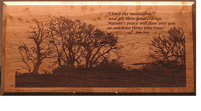 John Muir Quote Plaque