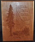 Redwood Plaque